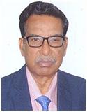 Mr. T. K. Sengupta Vice President